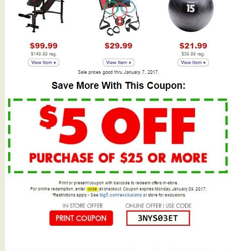 graphic about Big 5 Coupons Printable called Massive 5 coupon 25 off - Laser hair substitution expense