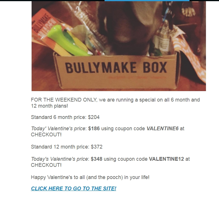 Bullymake coupon code